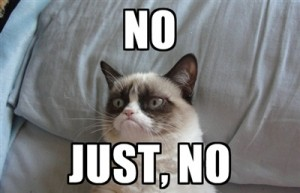 grumpy-cat-saying-no (4)