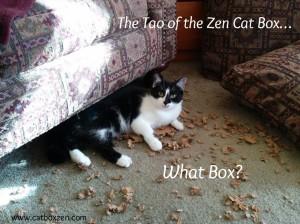 tao of zen cat box