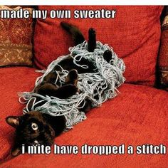 learning to knit...