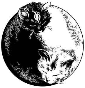 Image hotlink - 'http://www.catboxzen.com/wp-content/uploads/2015/03/yin__yang_cats_by_steff00-d6xs0rm2-290x300.png'
