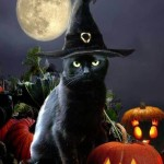 Black Cat Countdown -Day 1 Witches & Cats